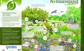 Nomansland (a)