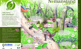 Nomansland (b)